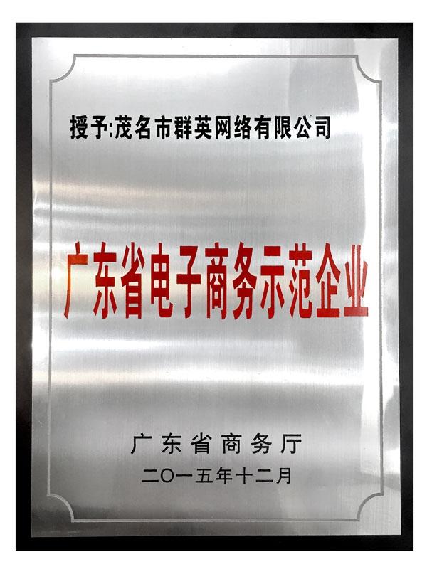 群英获取电子商务奖